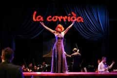 Carmen Sängerin
